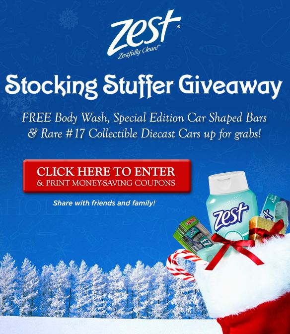 zeststockingstuffergiveaway