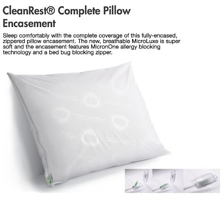 cleanrest pillow