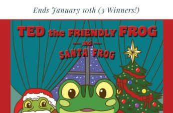 Ted the Friendly Frog